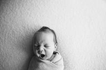Baby Ollie | 16