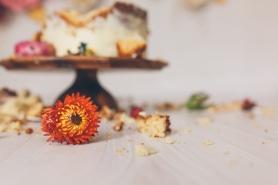 Arlo's Cake Smash | 140