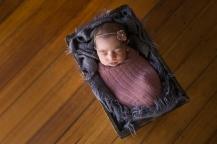 Baby Indi | 022