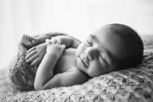 Baby Indi | 038